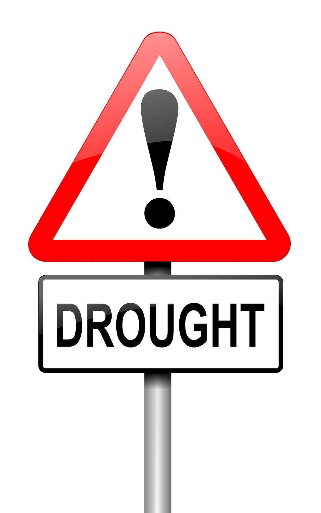 Drought concept.