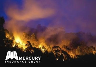 Mercury Insurace Group