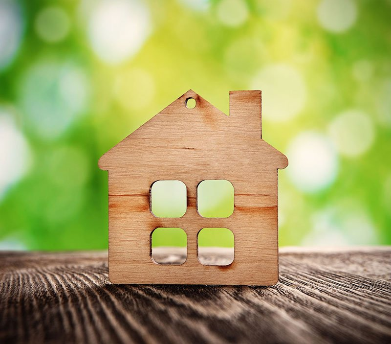 How to Make Your Home Eco-Friendly for Earth Day!